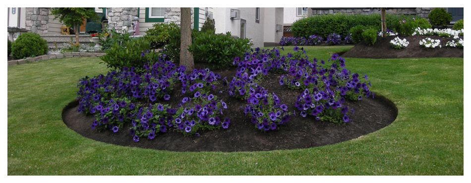 Fabulous Flower Beds Banner