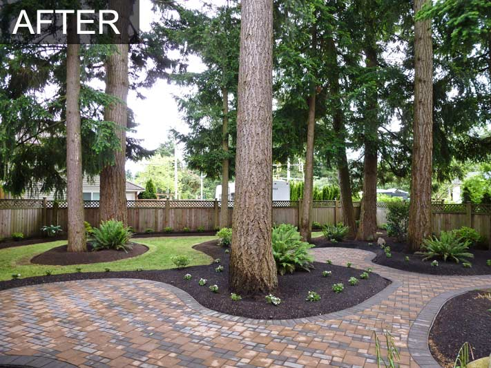 Backyard makeover with irrigation system for home in for Back garden designs before and after