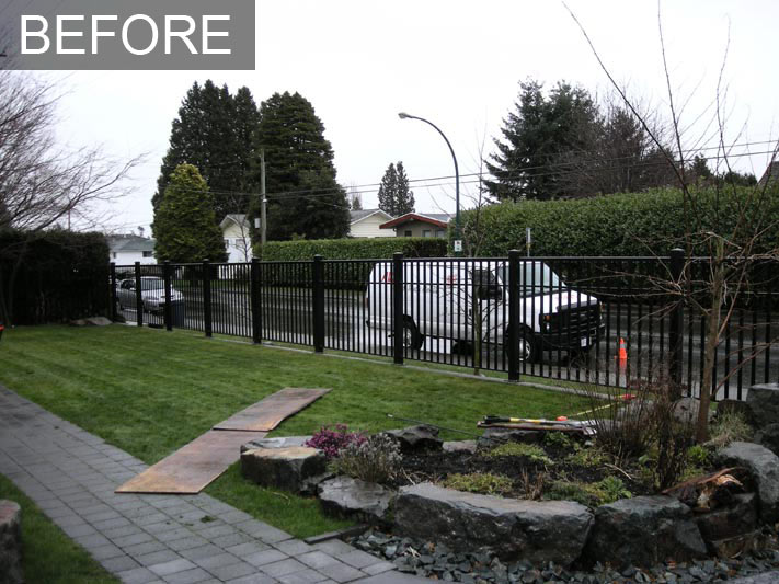 Cedar Hedge White Rock Bc Privacy Hedge Reduces Street