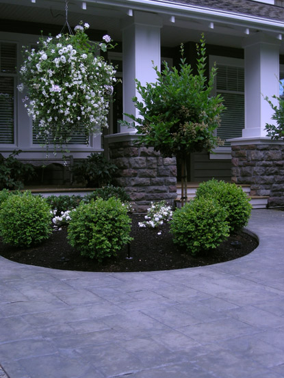 Black Mulch Landscaping Ideas Front Yard