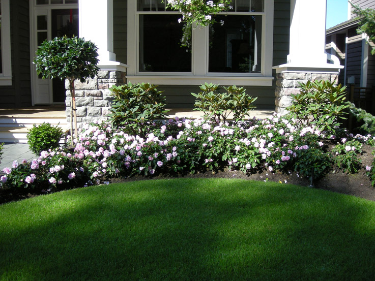 Front Yard Makeover 24